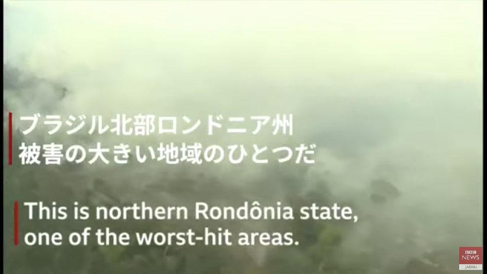 【アマゾン森林火災】ヘリコプターからBBC記者が解説