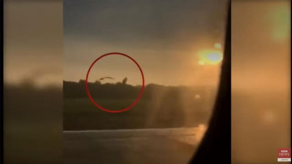 バードストライクの瞬間!緊急着陸で70人以上負傷【ロシア旅客機】