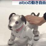 aiboを若者へ 渋谷でプログラミング体験