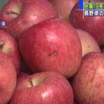 【台風19号被災リンゴ】農家を支援するため都内で販売開始!
