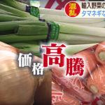 """""""新型コロナショック""""  野菜への影響"""